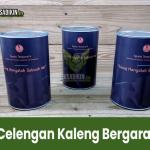 Jual Celengan Surabaya